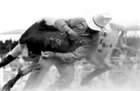 Buulldogger