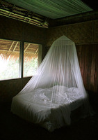 Bed, Pohnpei